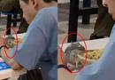 高校男带宠物鸟就餐
